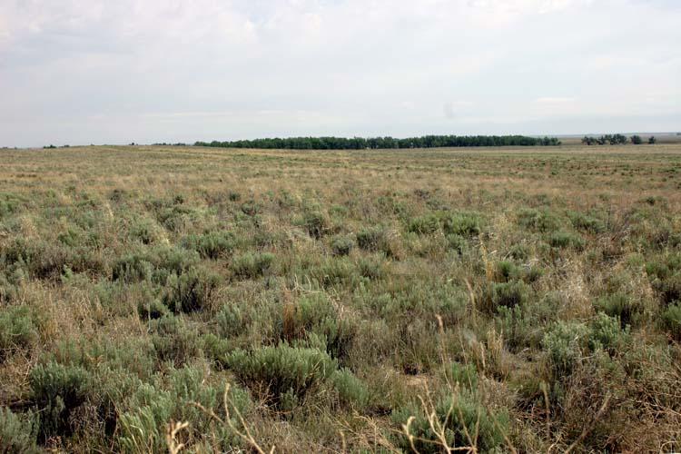 Site of the Sand Creek Massacre